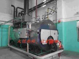 红旗煤业2t蒸汽锅炉